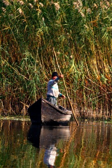 A lone fisherman on the Danube Delta (photo: Raff, from Wikmedia Commons)
